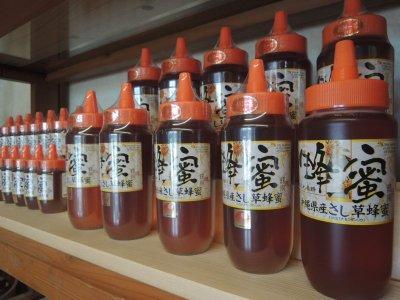 画像1: 沖縄県産さし草蜂蜜 500g (ポリ容器)